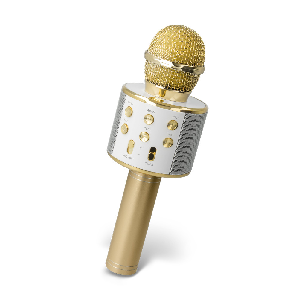 Forever BMS-300 microphone with bluetooth speaker gold